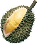 Durian02